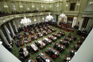 state assembly